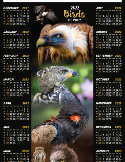 Birds of Prey Poster 2022