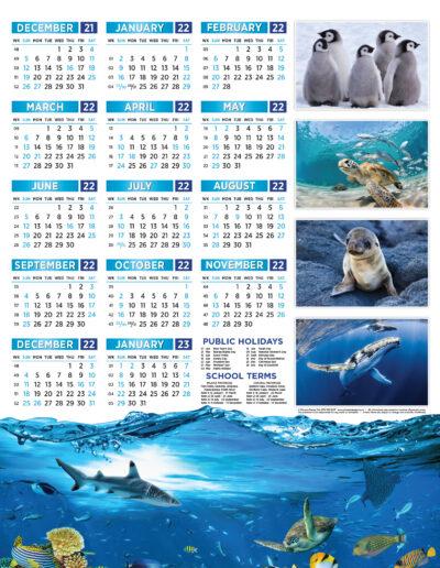 Marine Life Poster 2022